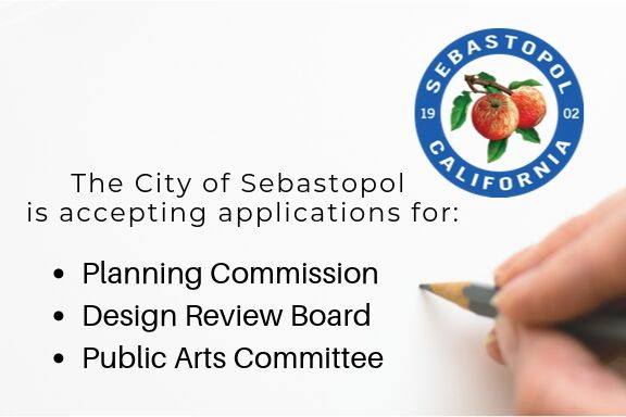 Openings on the Planning Commission, Design Review Board and Public Arts Committee