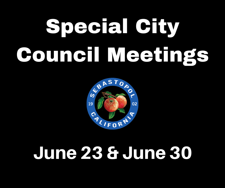 6/19: Special Meetings June 23 & 30 to Plan Process to Address Community Public Safety Concerns